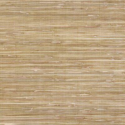Papel Tapiz Texture Style 2 BG21536